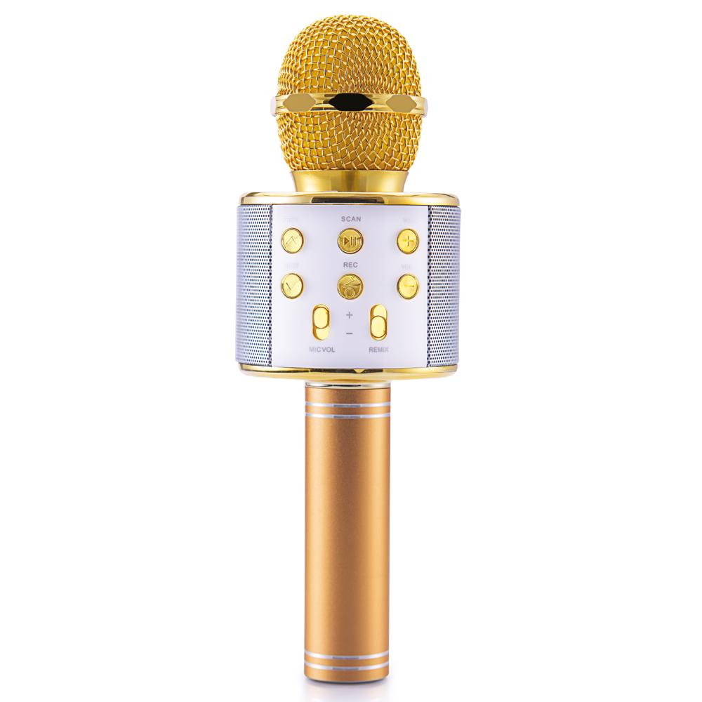 Gold Master Star 2018 Karaoke Mikrofon