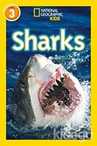 Sharks (Readers 3)