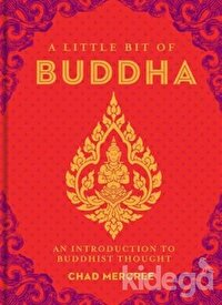 A Little Bit of Buddha: An Introduction to Buddhist Thought