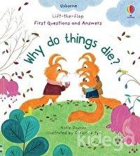 Why Do Things Die?