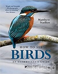 How To See Birds