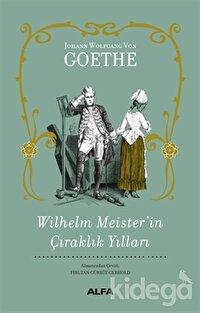 Wilhelm Meister'in Çıraklık Yılları