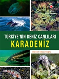 Karadeniz - Türkiye'nin Deniz Canlıları