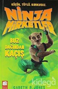 Ninja Mirketler - Buz Dağından Kaçış