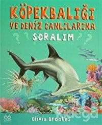 Köpek Balığı ve Deniz Canlılarına Soralım