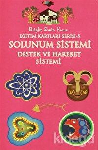 Solunum Sistemi, Destek ve Hareket Sistemi - Eğitim Kartları Serisi 5