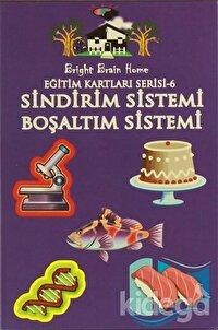 Sindirim Sistemi, Boşaltım Sistemi - Eğitim Kartları Serisi 6