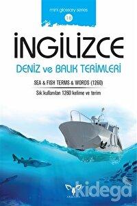 İngilizce Deniz ve Balık Terimleri
