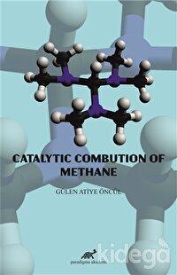 Catalytic Combution Of Methane