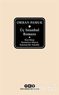 Üç İstanbul Romanı (Şömizli)