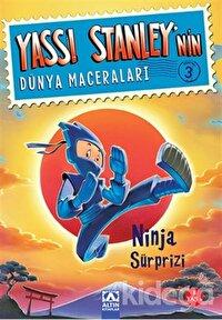 Yassı Stanley'nin Dünya Maceraları 3 - Ninja Sürprizi