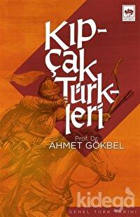 Kıpçak Türkleri Siyasi ve Dini Tarihi