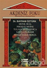 Akdeniz Foku Monachus Monachus
