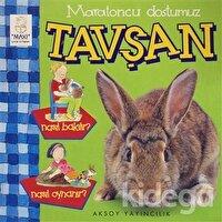 Maratoncu Dostumuz Tavşan Nasıl Bakılır? Nasıl Oynanır?