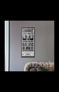 Poster - Lucius Malfoy Küçük