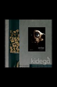 Poster -  Harry Potter and Deathly Hollows Part I Dobby Afiş Büyük