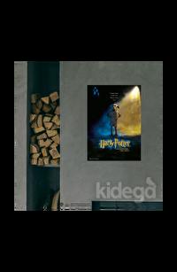 Poster - Harry Potter and the Chamber of the Secrets Afiş Küçük
