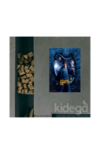 Poster - Hogwarts Karakter Harry Büyük