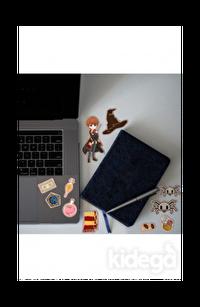 Ron Weasley Sticker Set