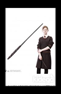 Ginny Weasley Asa