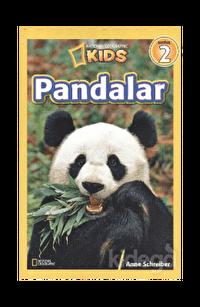 Seviye-2: Pandalar