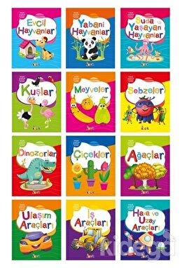 Küçük Kaşifin Boyama Kitabı (12 Kitap Takım)