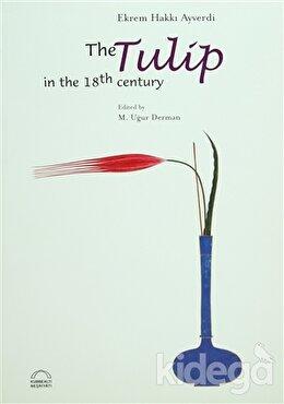 The Tulip in the 18th Century