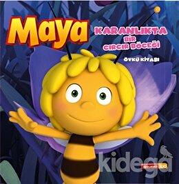 Arı Maya - Karanlıkta Bir Cırcır Böceği Öykü Kitabı