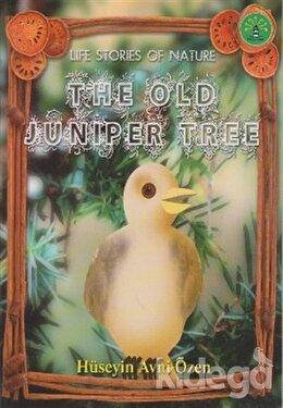The Old Juniper Tree