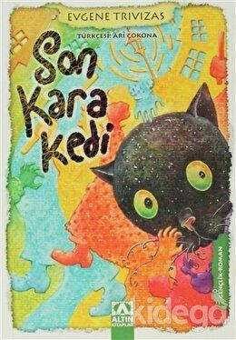 Son Kara Kedi