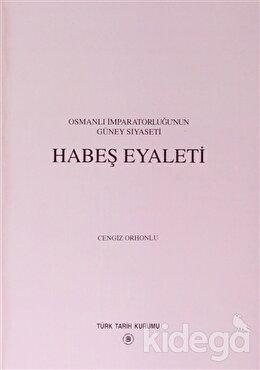 Osmanlı İmparatorluğu'nun Güney Siyaseti Habeş Eyaleti